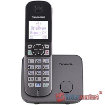 Радиотелефон Panasonic Dect KX-TG6811CAM